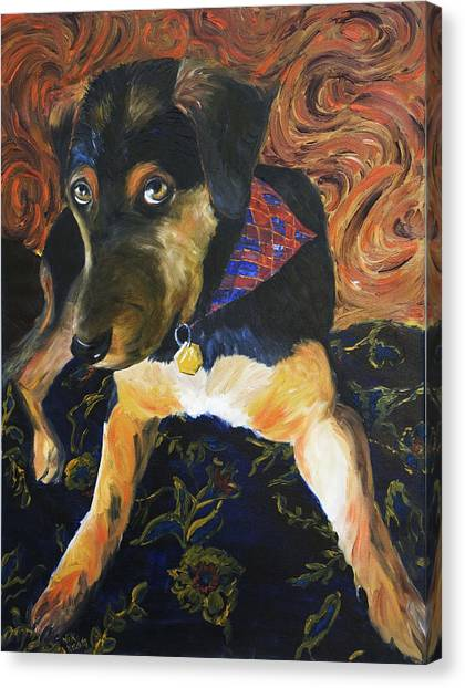 Murphy I Canvas Print by Nik Helbig