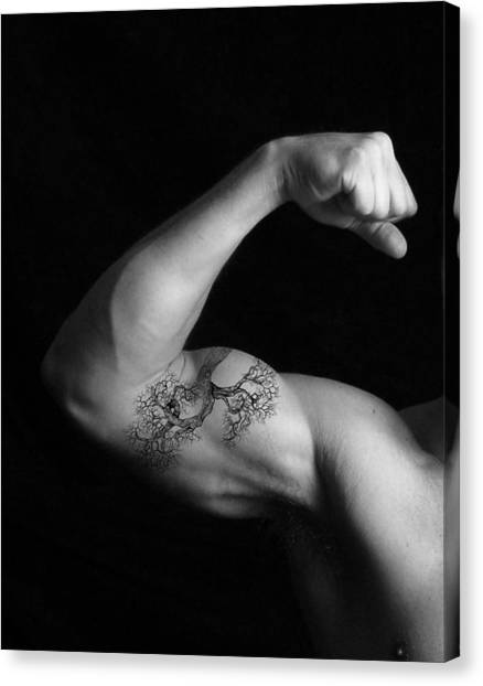 Muscle Growth Canvas Print