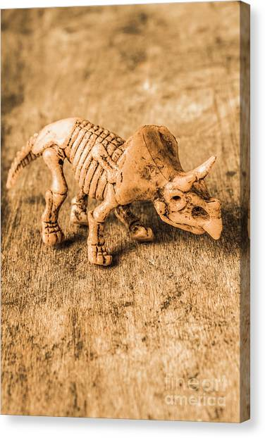 Triceratops Canvas Print - Museum Of Plastic Extinctions by Jorgo Photography - Wall Art Gallery
