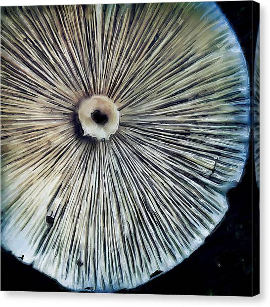 Canvas Print - Mushroom Flipped by Modern Art