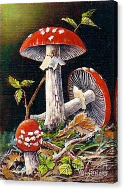 Mushroom Magic Canvas Print by Val Stokes