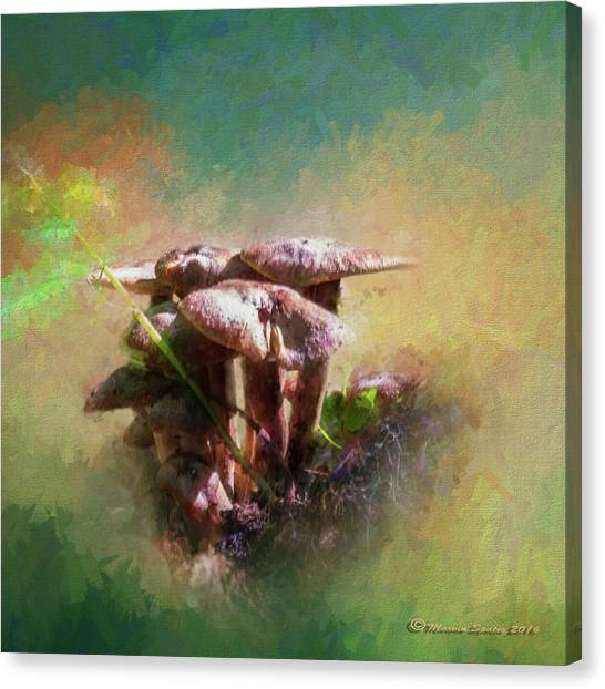 Woodland Canvas Print - Mushroom Patch by Marvin Spates