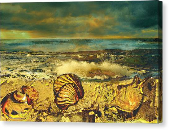 Mussels On The Beach Canvas Print by Anne Weirich
