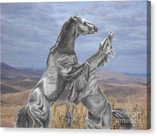 Mustang Battle Canvas Print by Russ  Smith