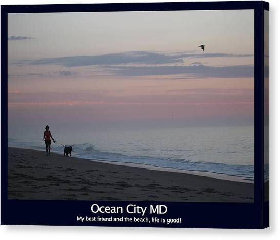 My Best Friend And The Beach Canvas Print