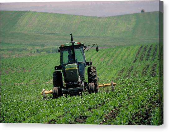 My Big Green Tractor Canvas Print