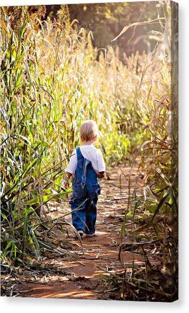 Corn Maze Canvas Print - My First Maze by Lana Trussell