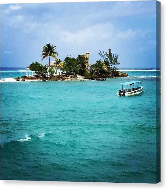 Jamaican Canvas Print - My New Island. You Like? #jamaica by Tammy Wetzel