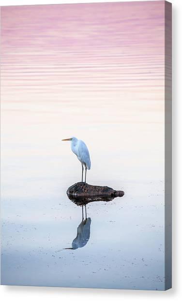 Water Birds Canvas Print - My Own Private Island by Az Jackson