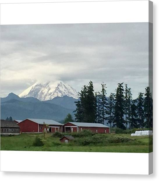 Barns Canvas Print - My Rainier #mountains #mtrainier by Joan McCool