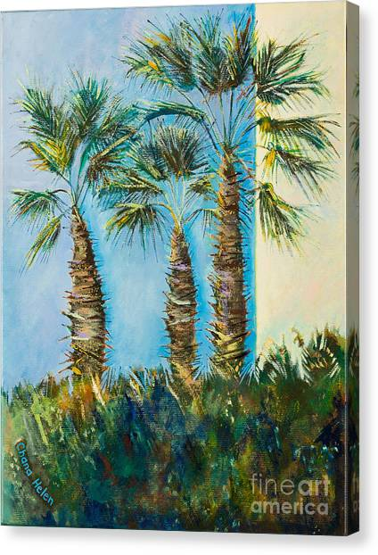 My Street, Three Trees Canvas Print by Chana Helen Rosenberg