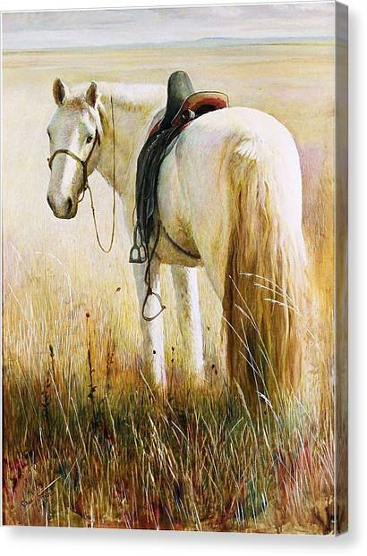 My White Horse  Canvas Print