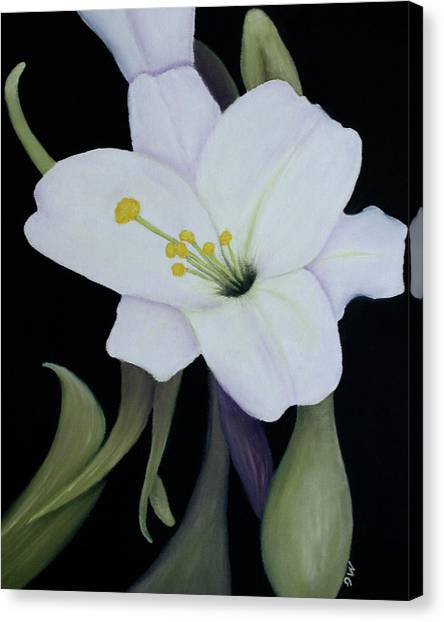 My White Lily Canvas Print by Mary Gaines