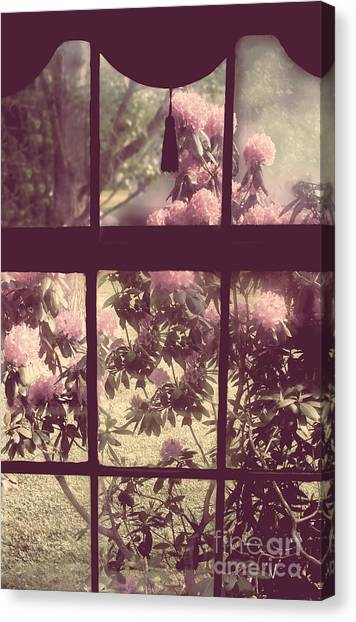 Windowpanes Canvas Print - My Window by Mindy Sommers