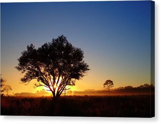 Myakka Sunrise Canvas Print
