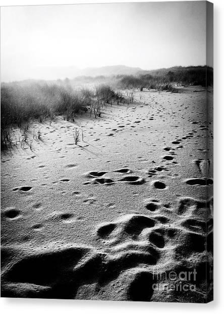 Mystery Beach Canvas Print by JMerrickMedia