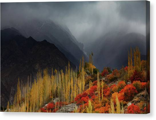 Mystery Mountains Canvas Print