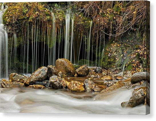 Mystery Stream Canvas Print