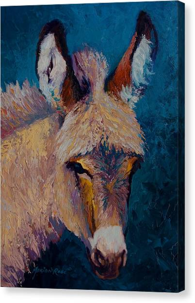 Donkeys Canvas Print - Mystic by Marion Rose