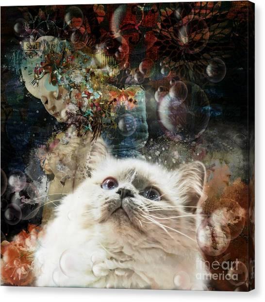 Birmans Canvas Print - Mystical  by Monique Hierck