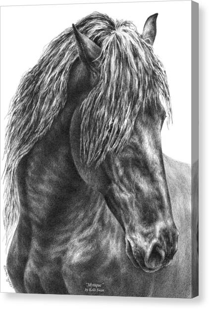 Mystique - Friesian Horse Portrait Print Canvas Print