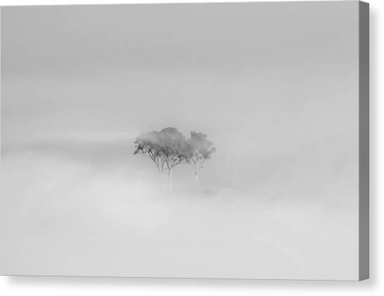 Smokey Canvas Print - Mystique by Az Jackson
