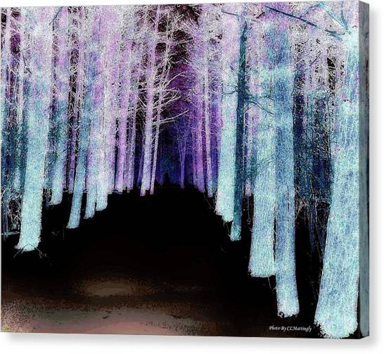Mythical Forrest Canvas Print