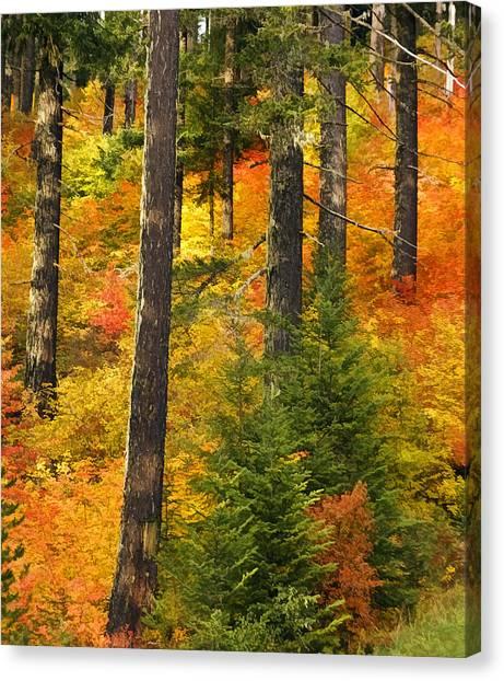 N W Autumn Canvas Print