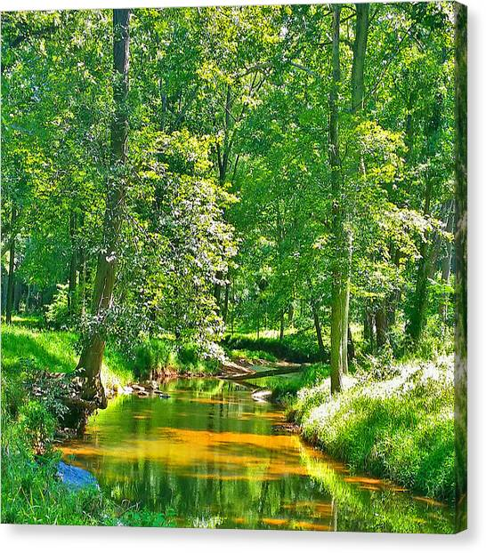 Nadine's Creek Canvas Print