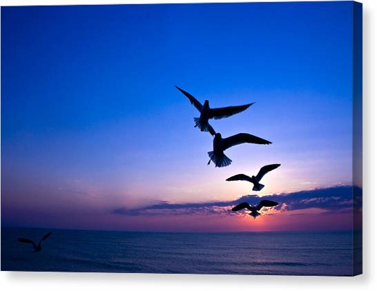 Nags Head Sunrise Canvas Print