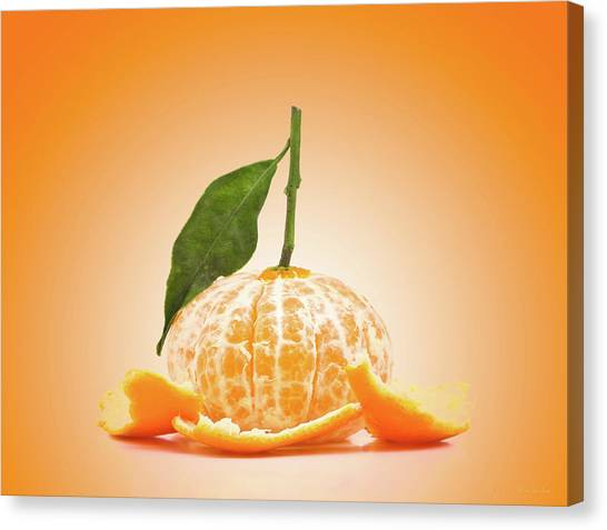 Tangerines Canvas Print - Naked Orange by Wim Lanclus