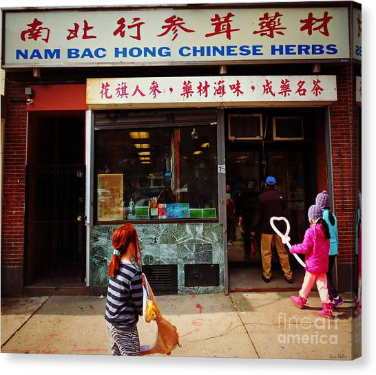 Nam Bac Hong Chinese Herbs, Chinatown, Boston, Massachusetts Canvas Print
