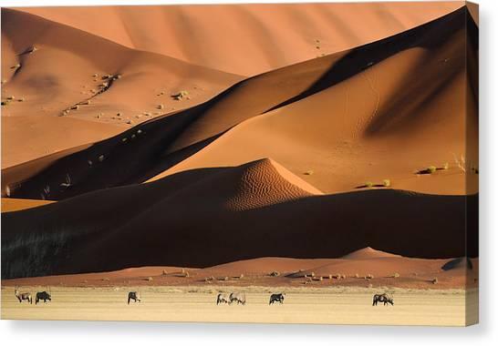 Namib Desert Canvas Print - Namib Dunes by Muriel Vekemans