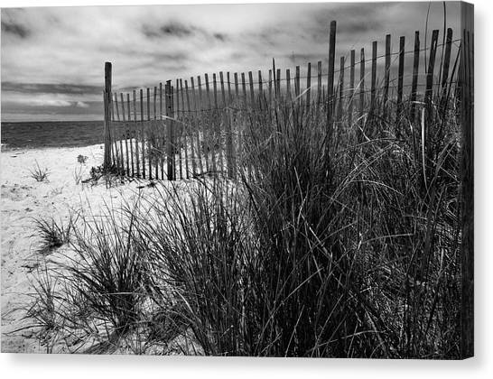 Seagrass Canvas Print - Nantucket Harbor Beach Dunes  by Expressive Landscapes Fine Art Photography by Thom