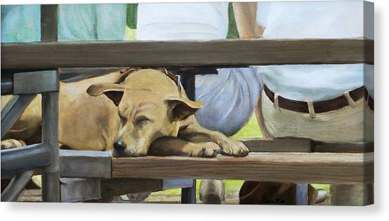 Naptime In The Bleachers Canvas Print
