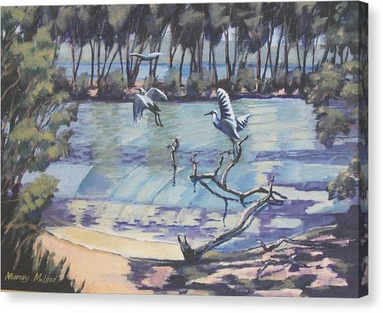 Narrabeen Lakes 2 Canvas Print