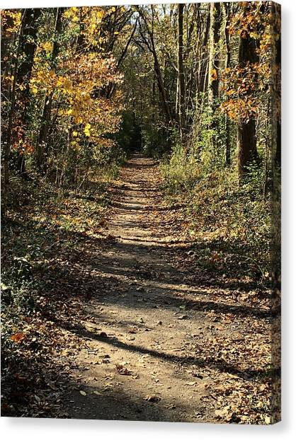 Warner Park Canvas Print - Natchez Trace In Warner Park by Randy Muir