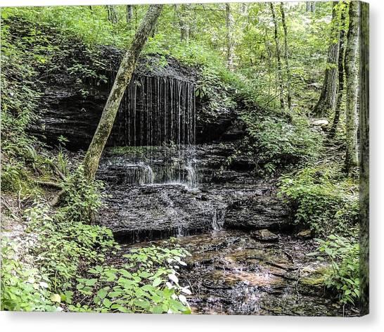 Natchez Trace Waterfall Canvas Print