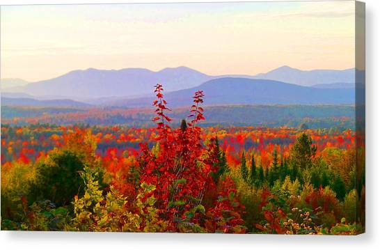 National Scenic Byway Canvas Print