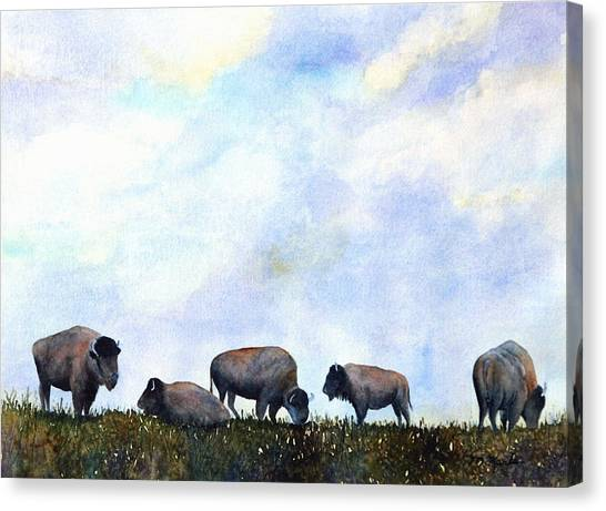 National Treasure - Bison Canvas Print
