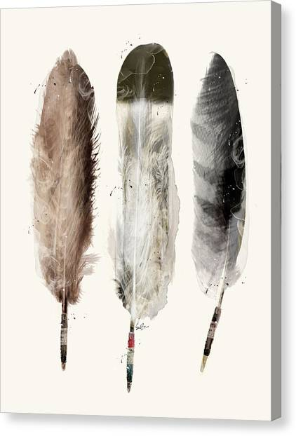 Native Canvas Print - Native Feathers by Bri Buckley