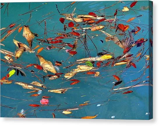 Natural 2 17 Canvas Print