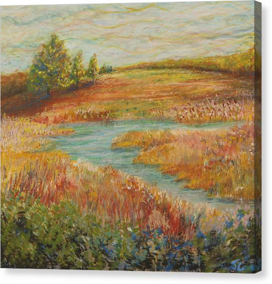 Natural Beauty Canvas Print by John Carman