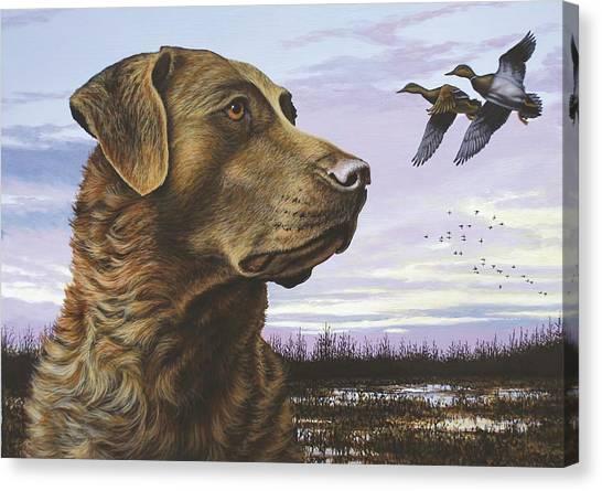 Natural Instinct - Chessie Canvas Print