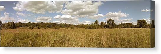 Sunny Canvas Print - Natural Meadow Landscape Panorama. by Arletta Cwalina