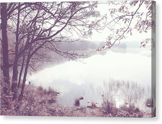 Jenny Lake Canvas Print - Natural Mirror With Natural Frame by Jenny Rainbow