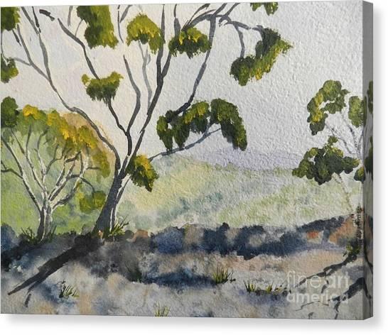 Natural Park A Shoalhaven Canvas Print
