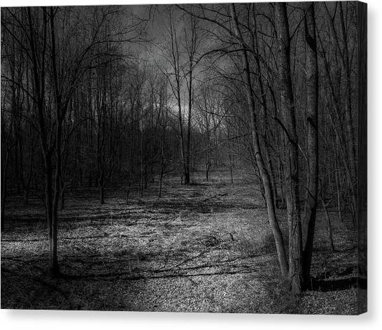 Natural Path Canvas Print