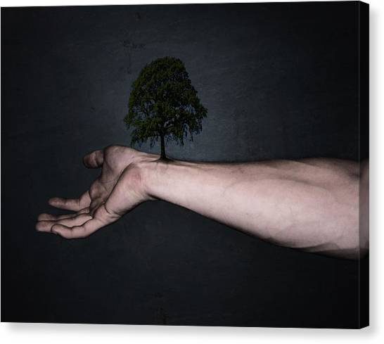 Fingers Canvas Print - Nature Inside Me by Nicklas Gustafsson