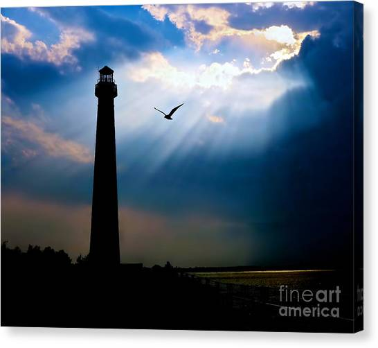 Nature Shines Brighter Canvas Print